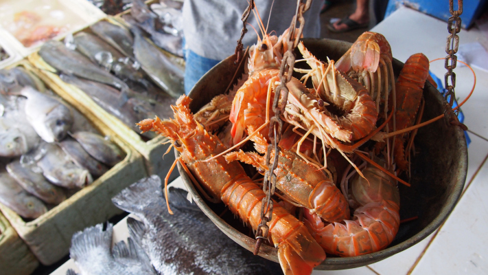 """indonesia-""""sea-to-table""""-platform-aruna-hooks-$35m-led-by-prosus-and-east-ventures-reveal-fund"""